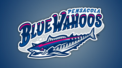 The Blue Wahoos' team colors are Neon red, Gulf Coast royal, Blue Angel navy and Tin Roof tin.